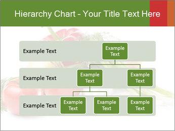 0000061803 PowerPoint Template - Slide 67