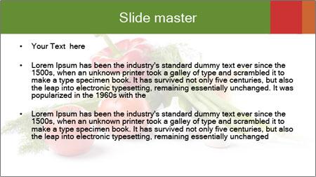 0000061803 PowerPoint Template - Slide 2