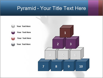 0000061809 PowerPoint Template - Slide 31