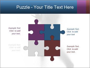 0000061809 PowerPoint Template - Slide 43