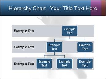 0000061809 PowerPoint Template - Slide 67