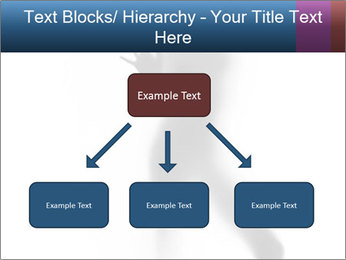 0000061809 PowerPoint Template - Slide 69