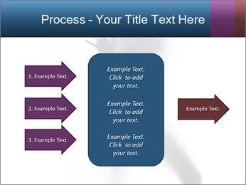 0000061809 PowerPoint Template - Slide 85