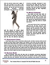0000061809 Word Templates - Page 4
