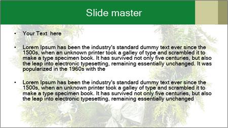 0000061810 PowerPoint Template - Slide 2