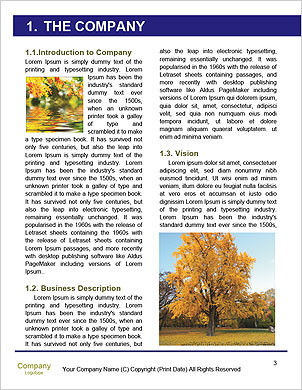0000061817 Word Template - Page 3