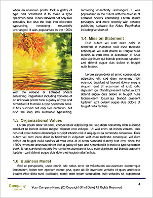 0000061817 Word Template - Page 4
