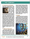 0000061822 Word Template - Page 3