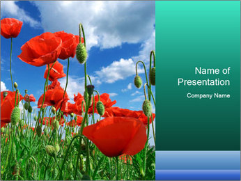 0000061835 PowerPoint Template - Slide 1