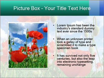 0000061835 PowerPoint Template - Slide 13
