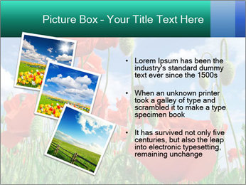 0000061835 PowerPoint Template - Slide 17