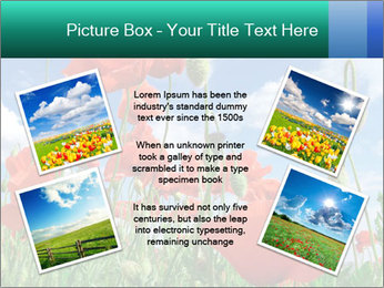 0000061835 PowerPoint Template - Slide 24