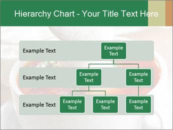 0000061861 PowerPoint Templates - Slide 67