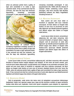 0000061861 Word Template - Page 4