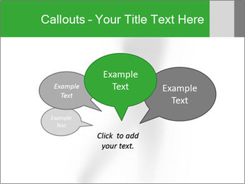 0000061862 PowerPoint Templates - Slide 73