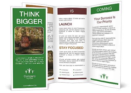 0000061865 Brochure Template