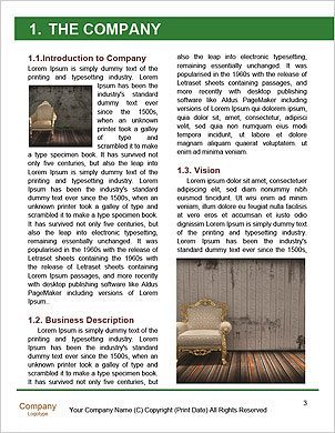 0000061865 Word Template - Page 3