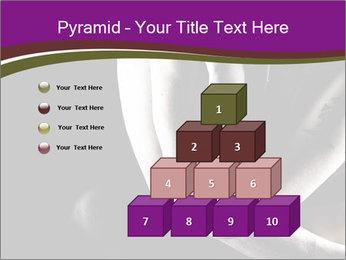 0000061871 PowerPoint Template - Slide 31