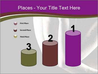0000061871 PowerPoint Templates - Slide 65