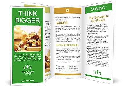 0000061876 Brochure Template