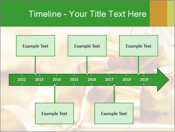 0000061876 PowerPoint Templates - Slide 28