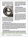 0000061890 Word Template - Page 4