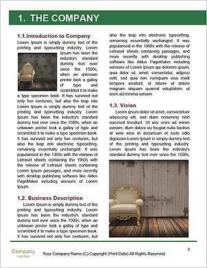 0000061891 Word Template - Page 3