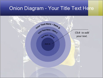 0000061897 PowerPoint Templates - Slide 61
