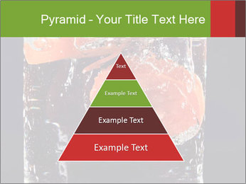 0000061900 PowerPoint Templates - Slide 30