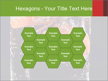 0000061900 PowerPoint Templates - Slide 44