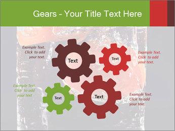 0000061900 PowerPoint Templates - Slide 47