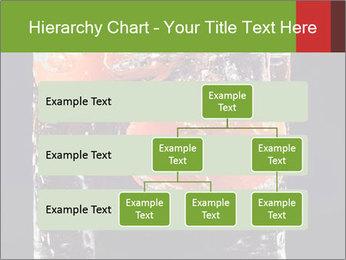 0000061900 PowerPoint Templates - Slide 67