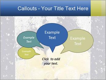 0000061901 PowerPoint Templates - Slide 73