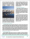 0000061905 Word Templates - Page 4