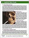 0000061910 Word Template - Page 8