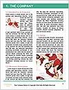 0000061911 Word Template - Page 3