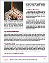 0000061912 Word Templates - Page 4