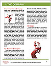 0000061914 Word Template - Page 3