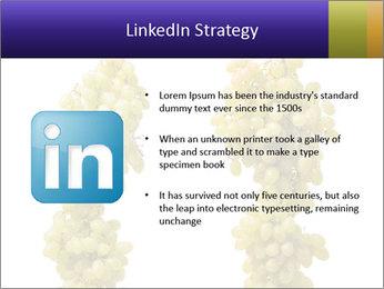 0000061920 PowerPoint Templates - Slide 12