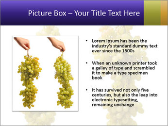 0000061920 PowerPoint Template - Slide 13
