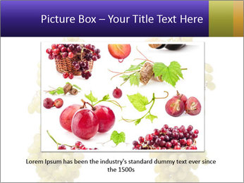 0000061920 PowerPoint Template - Slide 15