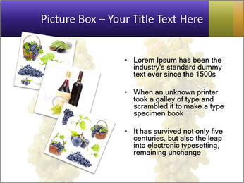 0000061920 PowerPoint Template - Slide 17