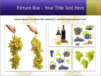 0000061920 PowerPoint Templates - Slide 19