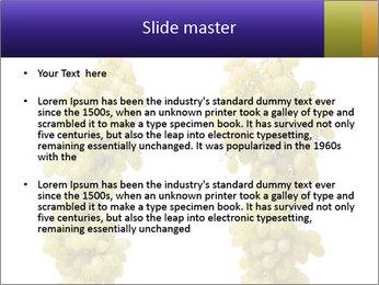 0000061920 PowerPoint Templates - Slide 2