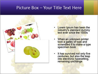 0000061920 PowerPoint Template - Slide 20