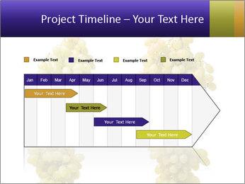 0000061920 PowerPoint Templates - Slide 25
