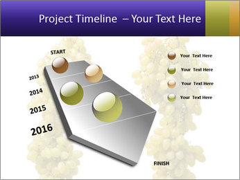 0000061920 PowerPoint Template - Slide 26