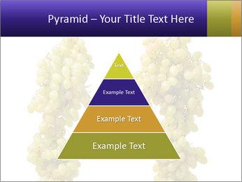 0000061920 PowerPoint Templates - Slide 30