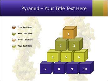0000061920 PowerPoint Templates - Slide 31