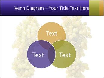 0000061920 PowerPoint Templates - Slide 33